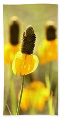 Prairie Coneflower In Morning Light Beach Sheet