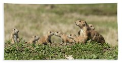 Prairie Dog Family 7270 Beach Towel