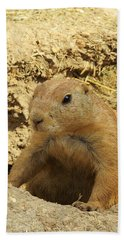 Beach Towel featuring the photograph Prairie Dog Peek by Robin Regan