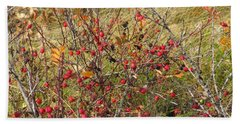Prairie Rosehips Beach Sheet
