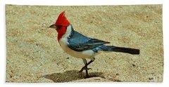 Prancing Brazil Cardinal Beach Sheet
