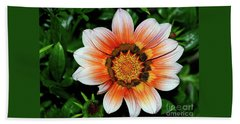 Beach Towel featuring the photograph Pretty Gazania By Kaye Menner by Kaye Menner
