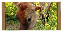 Pretty Jersey Cow Square Beach Sheet