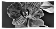 Beach Towel featuring the photograph Pretty Orchid Bw by Jeremy Hayden