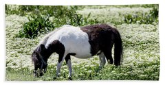 Pretty Painted Pony Beach Towel by James BO Insogna