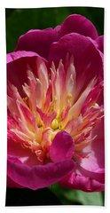 Pretty Pink Peony Flower Beach Towel