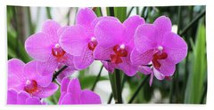 Pretty Pink Phalaenopsis Orchids #2 Beach Sheet