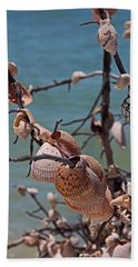 Beach Towel featuring the photograph Previously Loved Treasures by Michiale Schneider