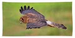 Prey Flyby Beach Towel