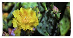 Prickly Pear Cactus Flower On Assateague Island Beach Towel