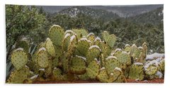 Cactus Country Beach Towel