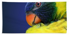 Profile Of A Lorikeet Beach Towel