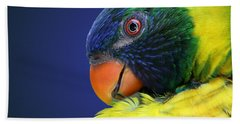 Profile Of A Lorikeet Beach Sheet