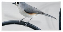 Profile Of A Tufted Titmouse Beach Sheet