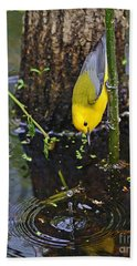 Prothonotary Warbler Beach Sheet