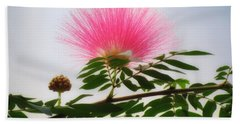 Puff Of Pink - Mimosa Flower Beach Towel by MTBobbins Photography
