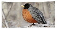 Beach Towel featuring the photograph Puffed Up Robin by Doris Potter