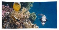 Pufferfish And Butterflyfish Beach Sheet