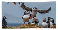 Beach Towel featuring the photograph Puffins by Brian Tarr