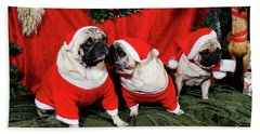 Pugs Dressed As Father-christmas Beach Towel