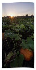 Beach Towel featuring the photograph Pumpkin Patch by Aaron J Groen