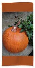 Pumpkin Beach Sheet