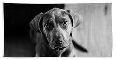 Puppy - Monochrome 1 Beach Towel