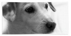 Puppy - Monochrome 4 Beach Towel