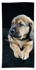 Puppy Portrait Beach Sheet