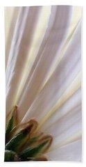 Beach Towel featuring the photograph Pure by Lauren Radke