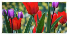 Purple And Red Tulips Beach Towel by Mitch Shindelbower