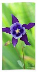 Purple Aquilegia Flower Beach Towel