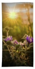 Purple Aster Glow Beach Sheet