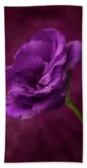 Purple Blossom With Morning Dew Beach Sheet