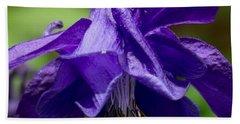 Purple Columbine Beach Towel