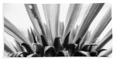 Purple Coneflower In Black And White Beach Towel