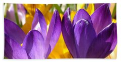 Purple Crocuses Beach Towel