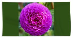 Purple Dahlia Beach Sheet