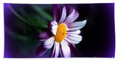 Beach Towel featuring the photograph Purple Daisy Flower by Susanne Van Hulst