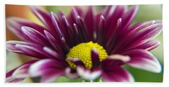 Purple Daisy Beach Sheet