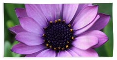 Purple Daisy Square Beach Towel