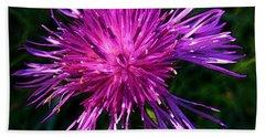 Purple Dandelions 4 Beach Sheet