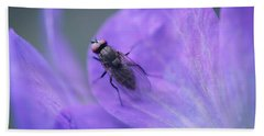 Purple Fly Beach Towel