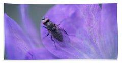 Purple Fly Beach Towel