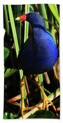 Purple Gallinule Beach Sheet