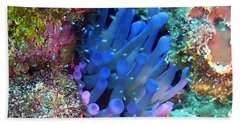 Purple Giant Sea Anemone Beach Sheet