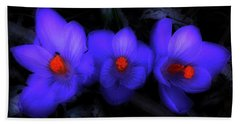 Beautiful Blue Purple Spring Crocus Blooms Beach Sheet