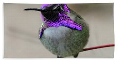 Purple Headed Hummer Beach Towel