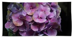 Purple Hydrangea- By Linda Woods Beach Towel