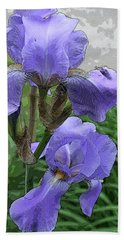 Purple Iris Beach Towel